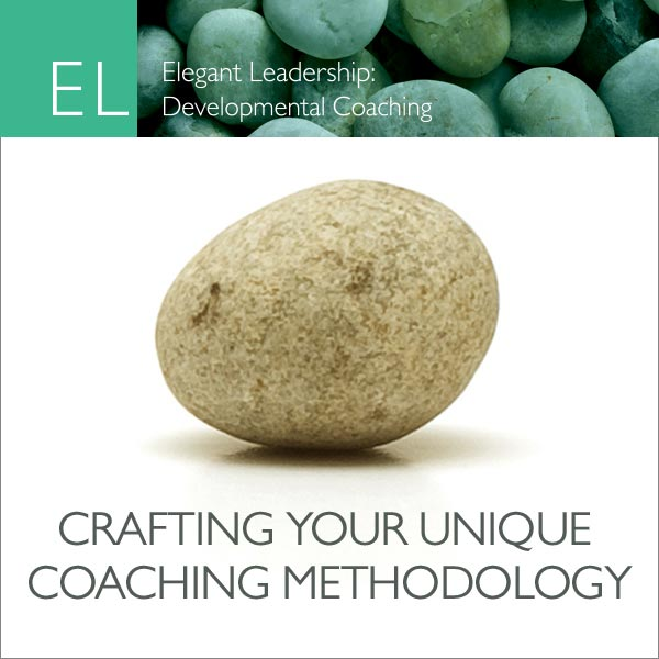Crafting Your Unique Methodology Cover Art